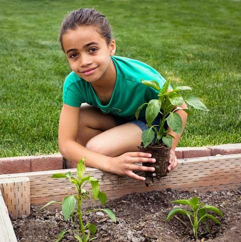 Girl holding plant by garden